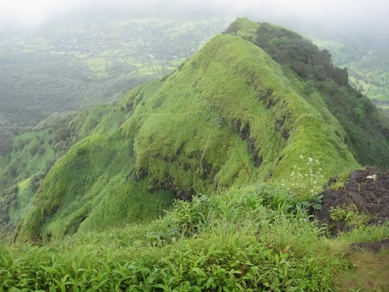 Photo taken in the rain from Elephant Head Point in Mahabaleshwar.