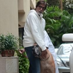 Amitabh Bachchan with Shanouk, his Piranha Dane Dog, at his house, Jalsa.