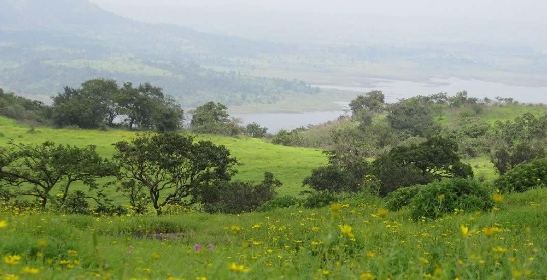 Picture of Bhimashankar, which is a popular trekking destination near Mumbai and Pune