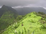 Matheran is a popular hill station near Mumbai. Monsoon is a good time to visit Matheran.