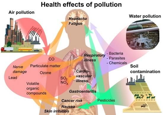 Noise, Air, Water, Environment Pollution In Mumbai
