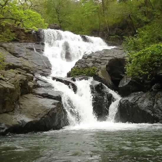 Chinchoti or Tungareshwar Waterfall is near Vasai